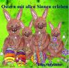 Ostern mit allen Sinnen erleben, Experimentieren & Sprachförderung